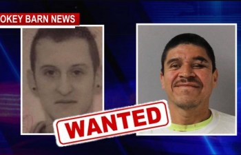 Two Suspects Still At Large Near Robertson County