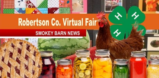 Rob. Co 4-H To Hold Virtual Fair 2020 - Submit Your Entries