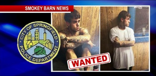 WANTED Where Is Brandon Reynolds? Springfield Police Offer Reward
