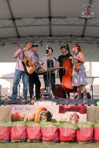 Bangalow BBQ and Bluegrass Festival 52.2