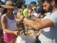 smokinya_greenovation-eco-building-challenge-youth-exchange-in-greece_018