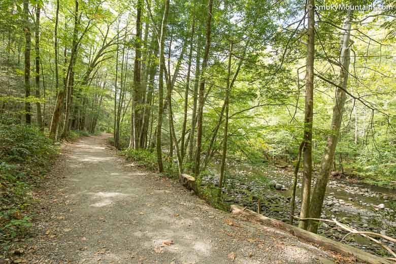 The only two trails in the park that allow pets are the gatlinburg trail near the sugarlands visitor center and the oconaluftee river trail near the oconaluftee visitor center. Gatlinburg Trail Hike Review W 40 Photos Directions