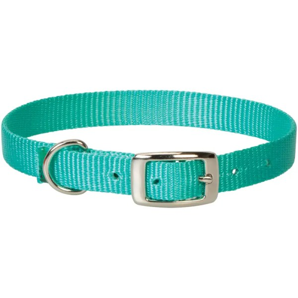 nylon goat collar mint teal aqua