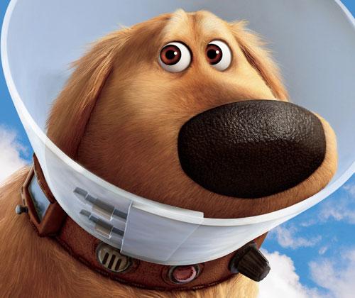 dug_dog