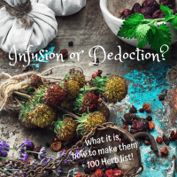 Herbal Infusion, Dedoction - What is it and How to Use which Herb? Plus List of >100 Herbs!