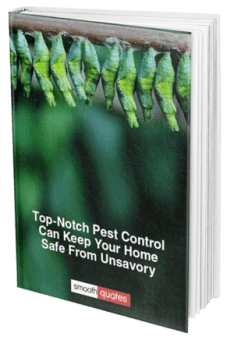 Guide To Pest Control