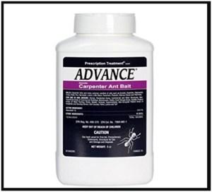 advance granular carpenter ant bait image