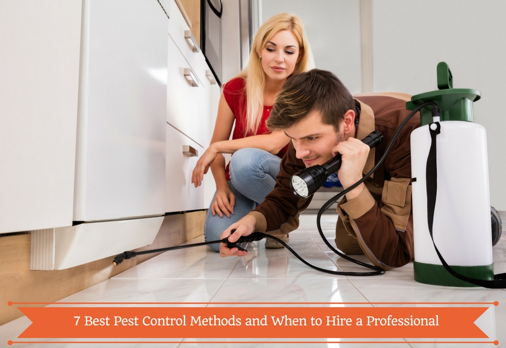 Best Pest Control Methods