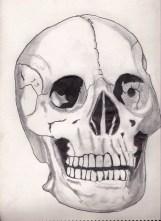 skull in rain