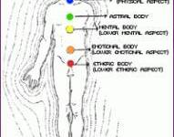 5 Planes of Human Body and its Description