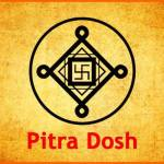 Pitra Dosh Healing Services