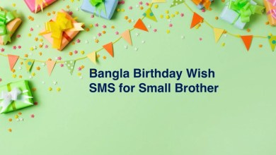 Bangla Birthday Wish SMS for Small Brother