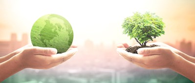 JP Morgan sustainable fund