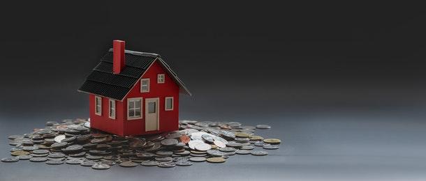 downsizer contribution assets