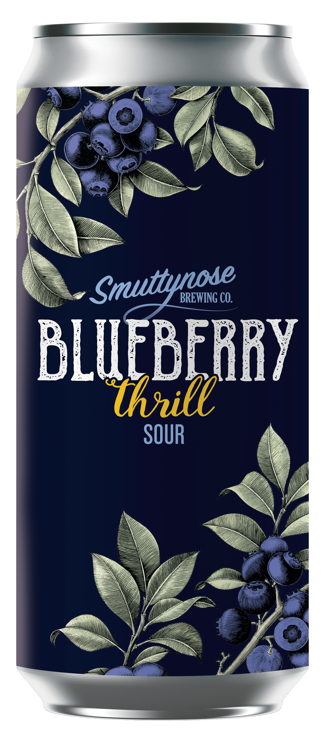 BLUEBERRY THRILL SOUR