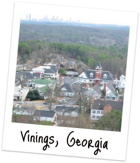 Vinings-homes-for-sale