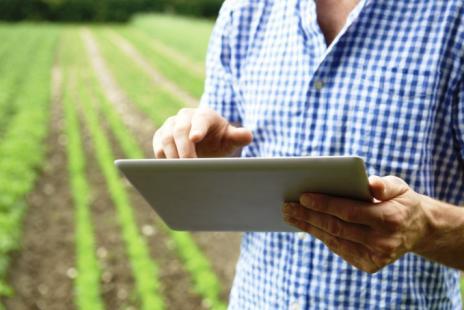 Tecnologia no campo pode colaborar com tomada de decisões (Foto: Stock Exchange)