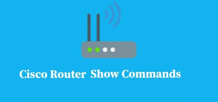 Cisco Router Show Commands