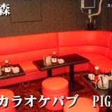 カラオケパブ PIGET(大森)