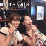 Members Cats(博多/中州)