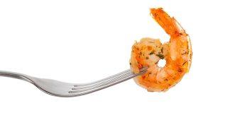 Shrimp on Fork