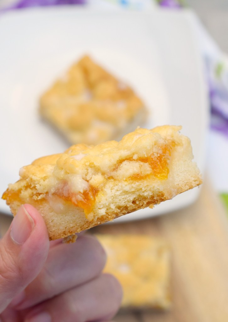 hand holding apricot cookie bar with bite taken out