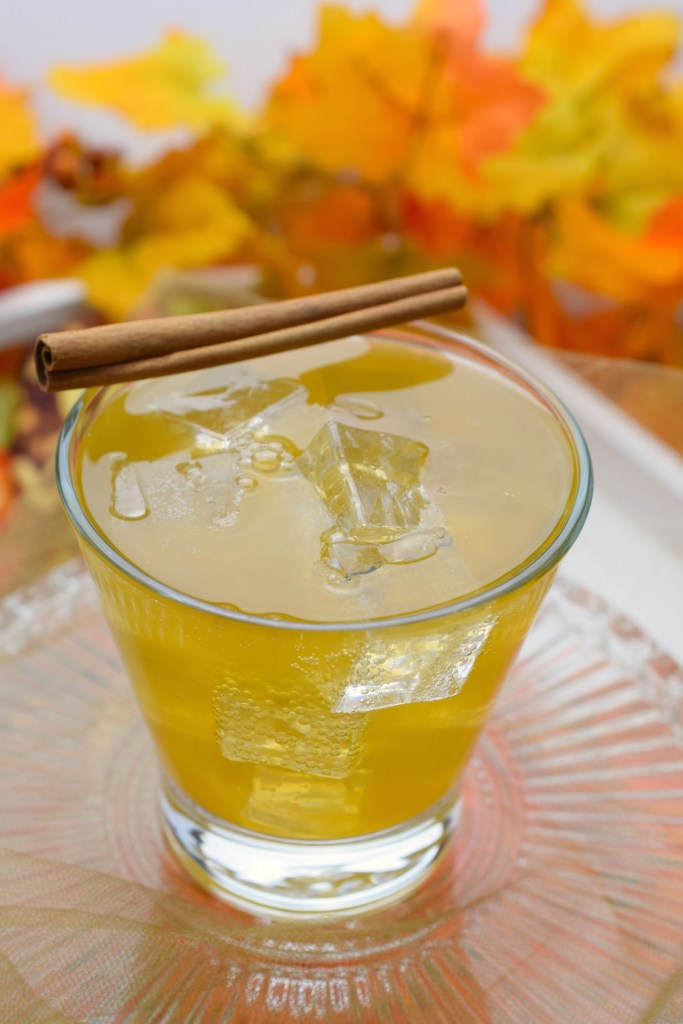 glass containing cocktail with cinnamon stick resting on side next to fall decor