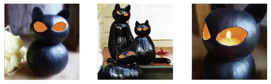 gato negro con calabazas DIY