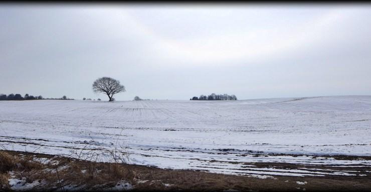 16.03.2012 nordsjaelland 066