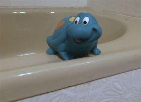 Tortoise on the bath edge.