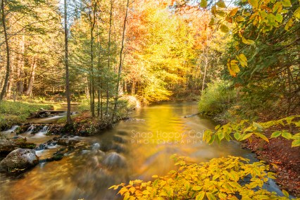 Photo: Golden fall reflections in the Rapid River, Michigan