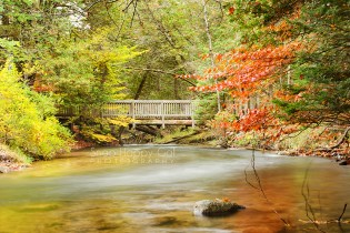 Photo: A foot bridge crosses the Rapid River under early fall color