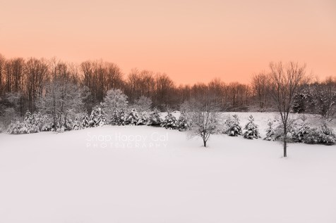 Photo: rolling snow-covered hill, rosy sky