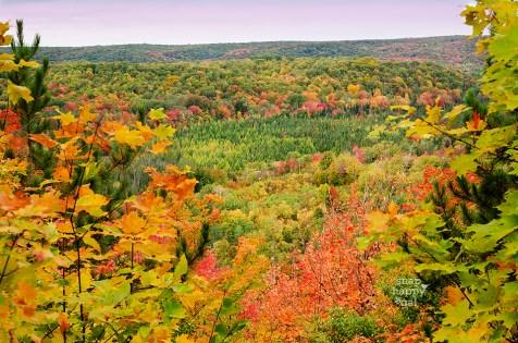 deadmans-hill-overlook-fall