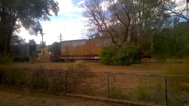 An old train car at one of our stops. We saw many old cars turned into businesses and homes.