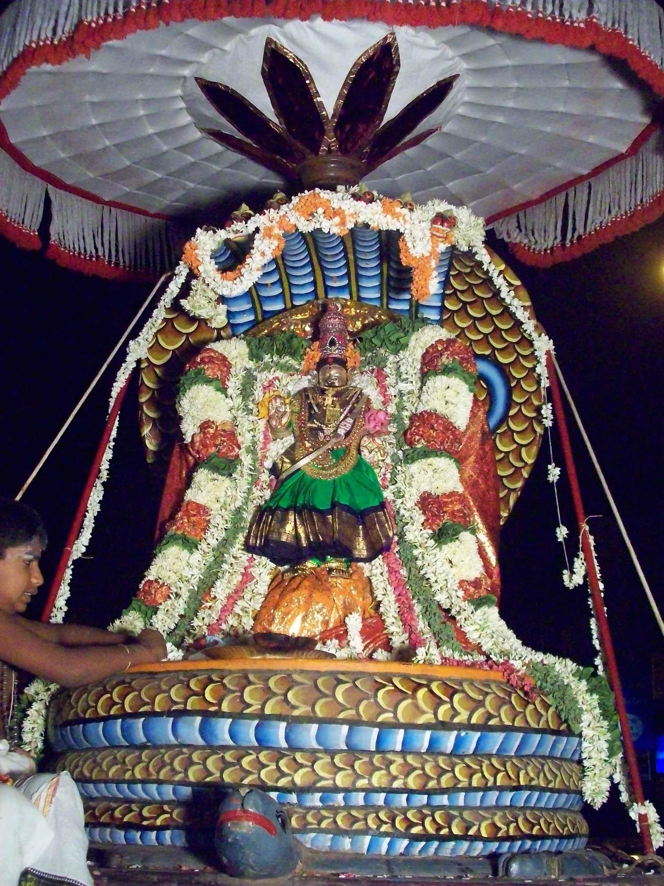 Parvathy-Naga-Vaganam-Velli-Eswarar-Sesha-Vaahanam