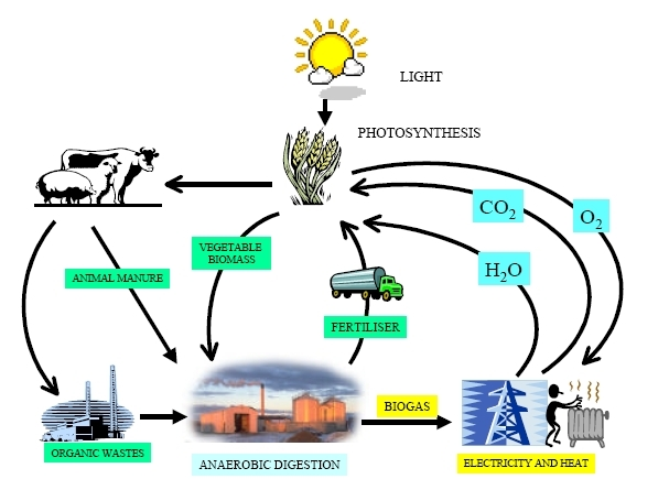 Bio-gas-recycle-solar-photo-synthetic-electricity-utility