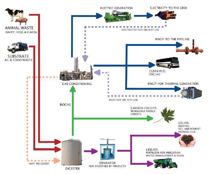 biopact_biogas_pipeline_UN-India