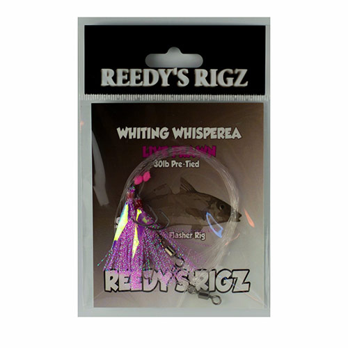 whiting rig, paternoster rig, circle hook