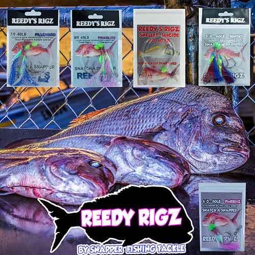 fishing rig , snapper rigs, snapper rig , fishing rigs, snapper ,