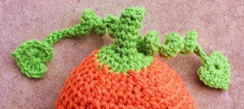 pumpkin set vine