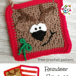 Free Pattern: Reindeer Squares Pouch