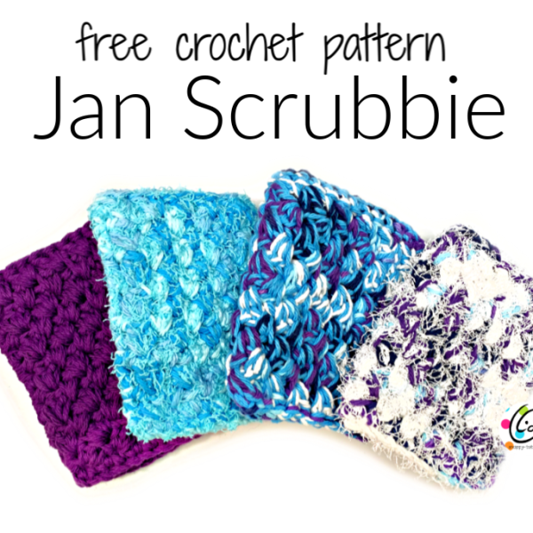 Wednesday Wash #2: January Scrubbie