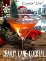Christmas Cocktails (candy cane cocktail) | snappygourmet.com