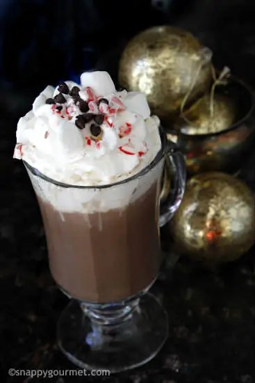 Homemade Hot Chocolate Mix Recipe | snappygourmet.com