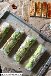 70+ Best Zucchini Recipes (Crispy Spring Rolls Recipe) | SnappyGourmet.com