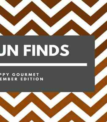 Fun Finds and Gift Ideas (November Edition) | SnappyGourmet.com