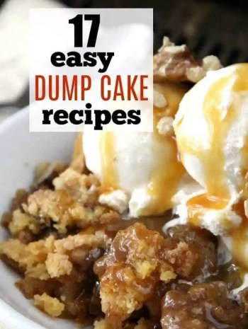 17 Easy Dump Cake Recipes