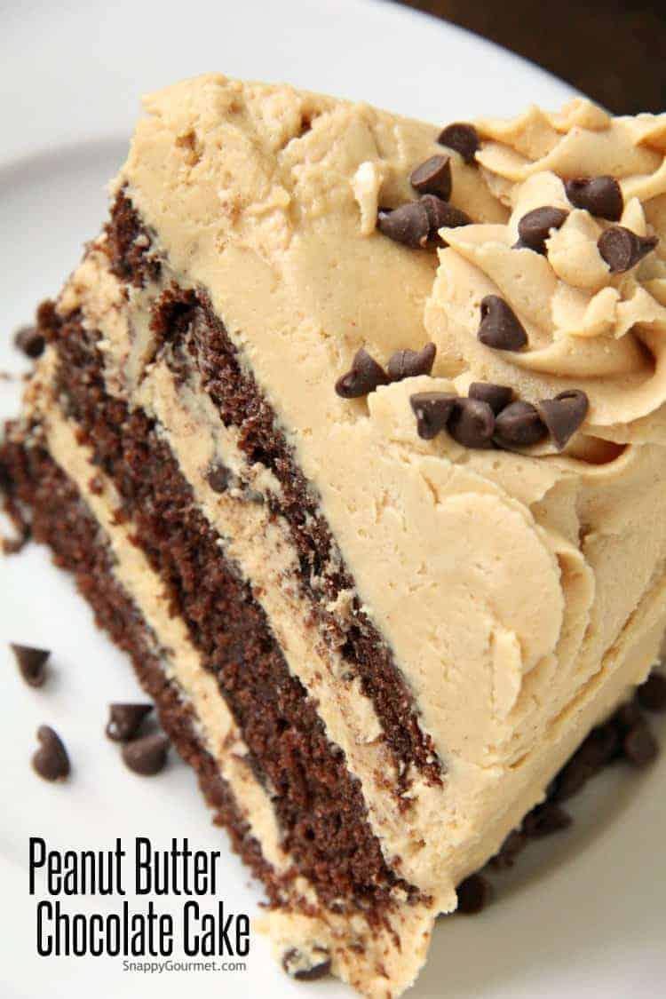 Peanut Butter Chocolate Cake slice on plate