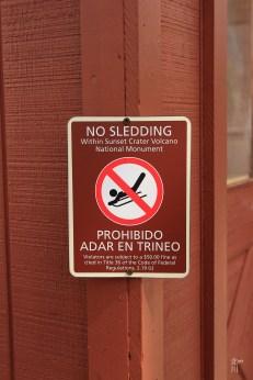 No Sledding